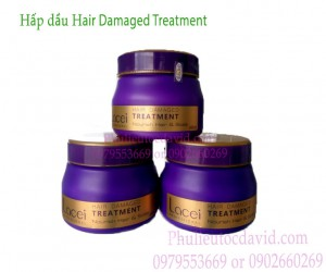 Kem ủ tóc LACEI 500ml (hấp dầu Hair Damaged Treatment)