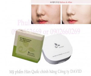 Phấn nước ECOSY - Nature CC Cushion The Collagen
